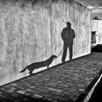 Milan Veliký - Na prechádzke s Blekym 2